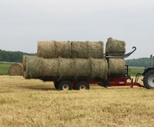 Round bale handler with bales